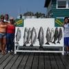 Lake Ontario Fishing Charters New York