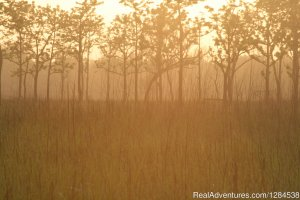 Terai Arc Landscape Adventures Bareilly, India Eco Tours