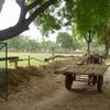 Delhi Eco Cultural Homestay Tours