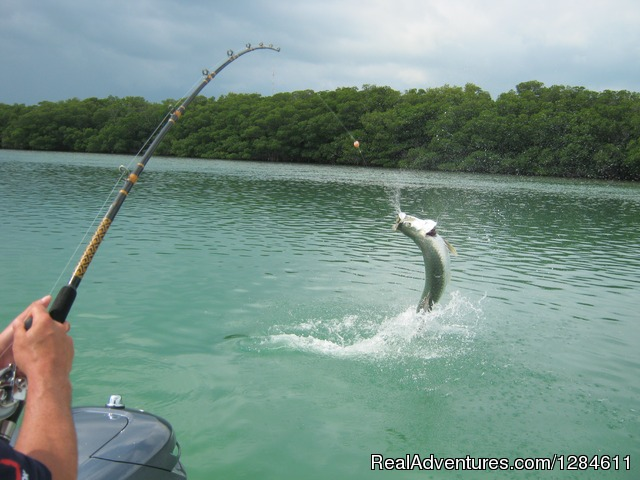 Backwater Fishing in Puerto Rico