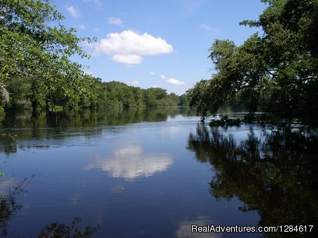 More Peaceful River Views | Image #7/8 | Health & Wellness Wholistic Resort