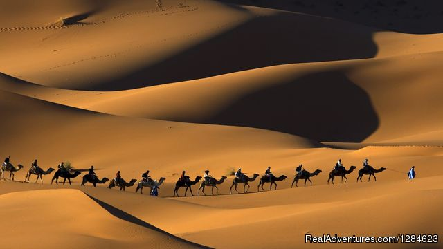 Welcome To Nomade Experience Travel Madison, Morocco Sight-Seeing Tours