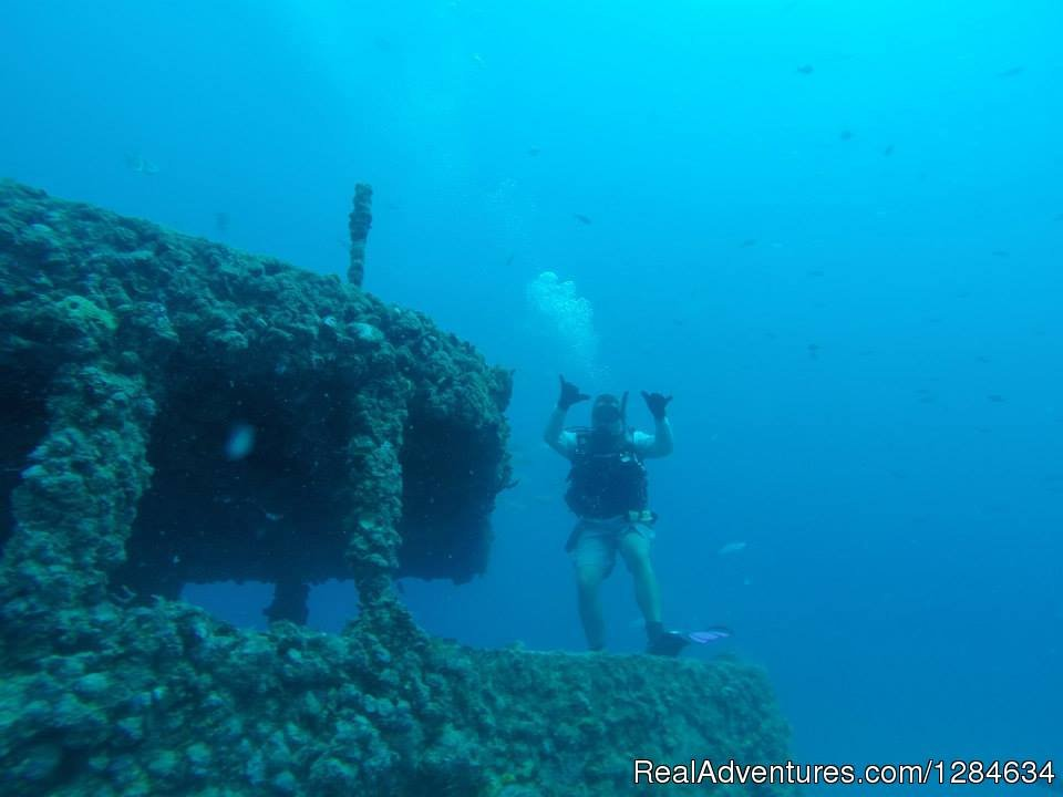Image #15/16 | Reef dive no experince needed with Keys Huka Dive