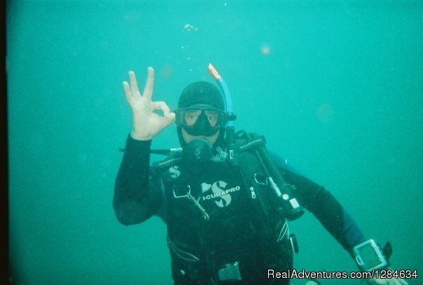 Image #11/16 | Reef dive no experince needed with Keys Huka Dive