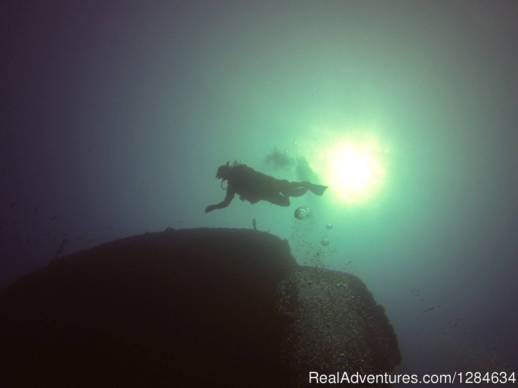 Image #12/16 | Reef dive no experince needed with Keys Huka Dive