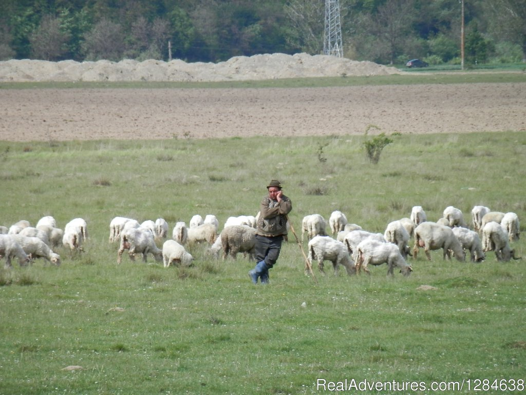 At work... | Image #4/26 | Discover Authentic Romania - 3 to 12 day tour