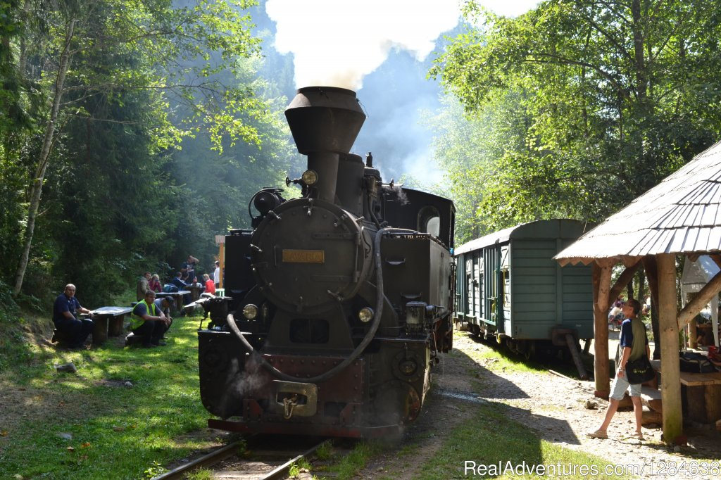 Steam engine on Vaser Valley | Image #14/26 | Discover Authentic Romania - 3 to 12 day tour