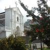 Guatemala Herbal Medicinal Tour