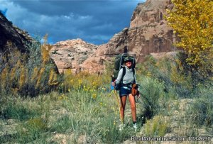 Big Wild Adventures Emigrant, Montana Hiking & Trekking