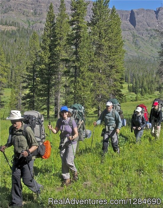 Popular Yellowstone Guided Hikes | Image #4/12 | Big Wild Adventures