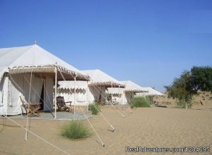 Pushkar Adventure Desert Camp Ajmer, India Camel Riding
