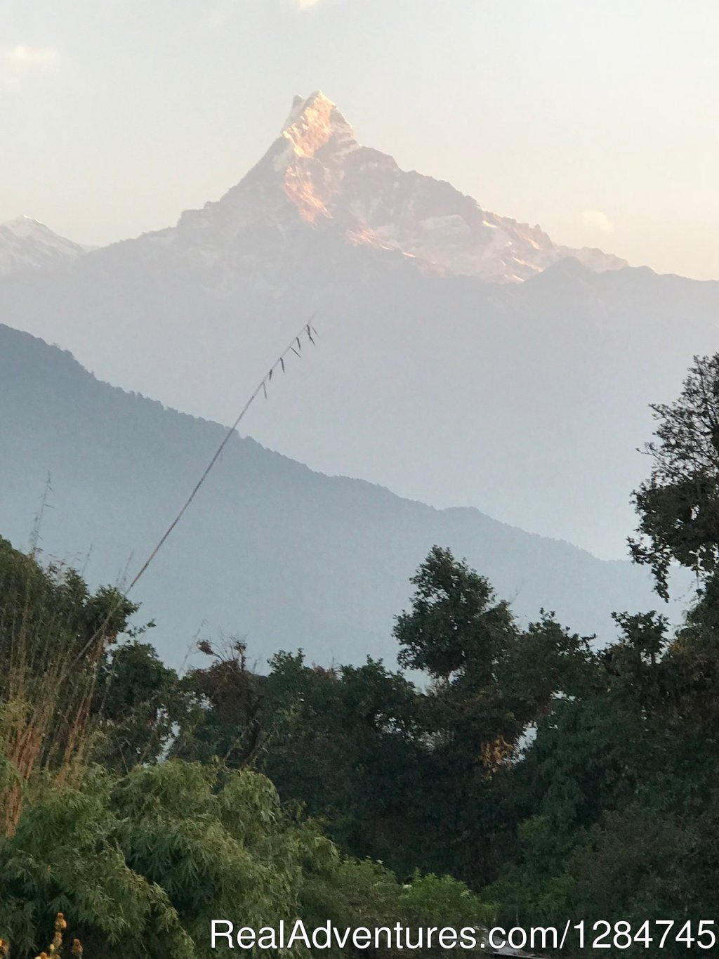 Holy mountain Fishtail-Annapurna | Image #4/11 | Adventure Glacier Treks & Expedition