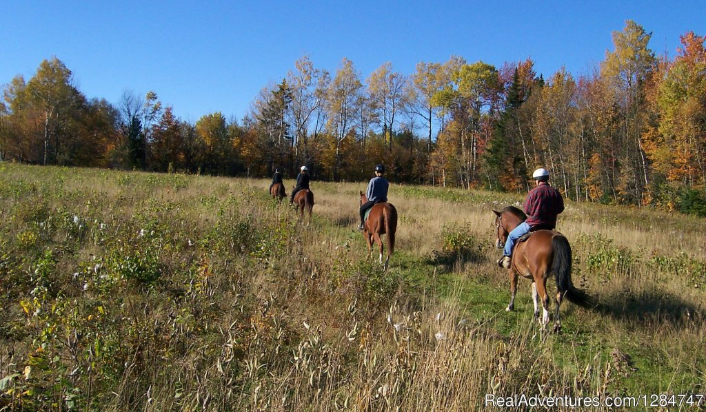 A Fall Ride in the Kingdom | Image #1/4 | East Burke, Vermont  | Horseback Riding | Guided Horseback Riding in the Northeast Kingdom