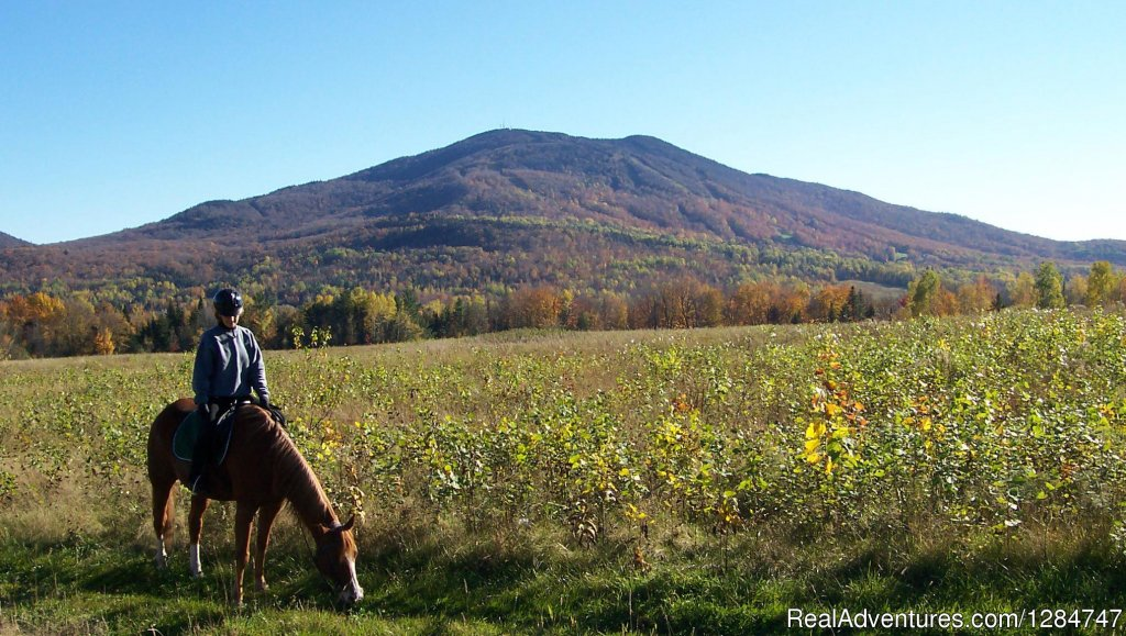 Spectacular Views | Image #4/4 | Guided Horseback Riding in the Northeast Kingdom