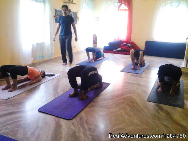 School of Holistic Yoga & Ayurveda Goa