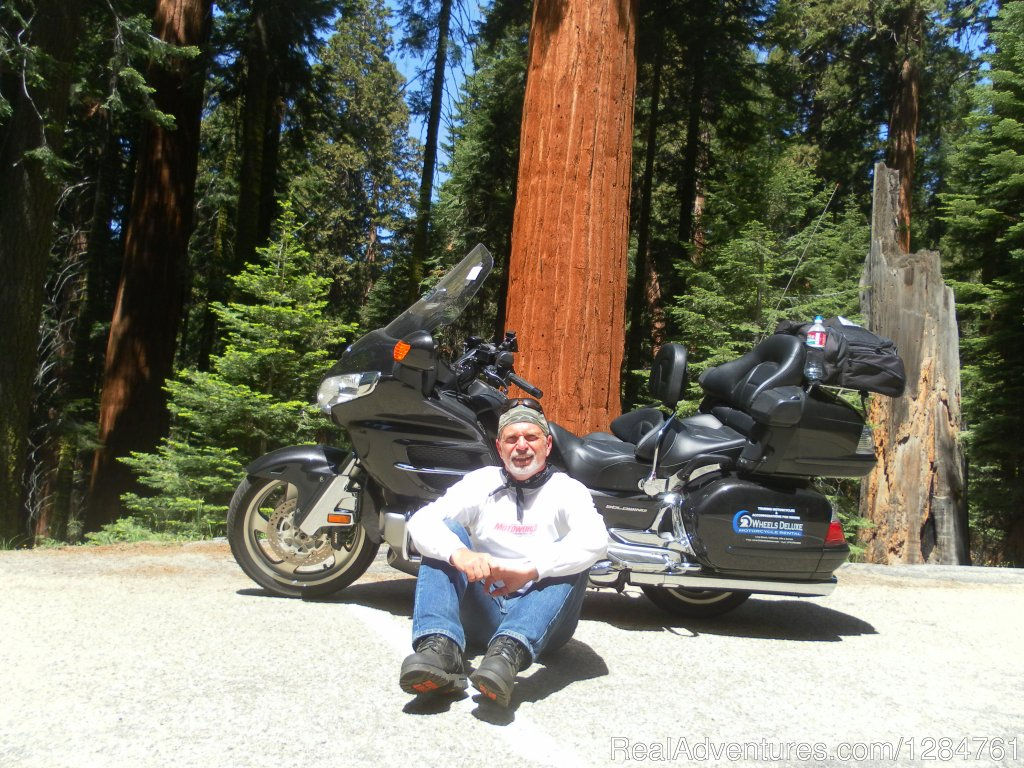 Riding in Yosemite it's all about California.... | Image #5/20 | Touring Motorcycles Rental And Accommodations