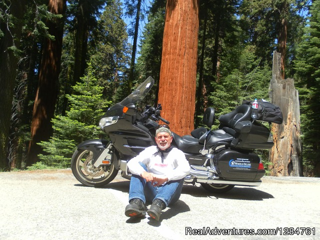 Riding in Yosemite it's all about California.... - Touring Motorcycles Rental And Accommodations