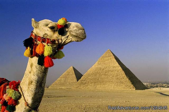 Tour Egypt in affordable cost with (Egypt Sunset)