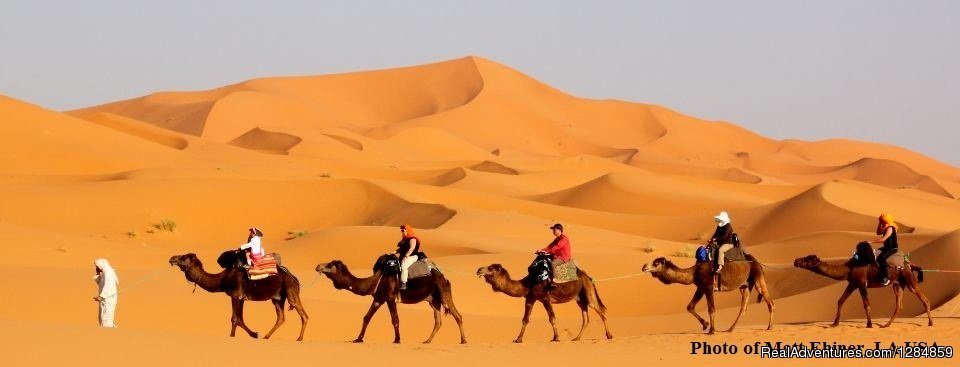 RoveMoroccoTravels - Private & Custom Tours Casablanca and Fes, Morocco Sight-Seeing Tours