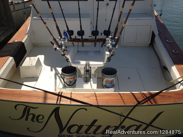 Charter Fishing trips Deale MD