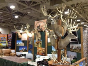 Cotton Mesa Trophy Whitetail Wortham, Texas Fishing Trips