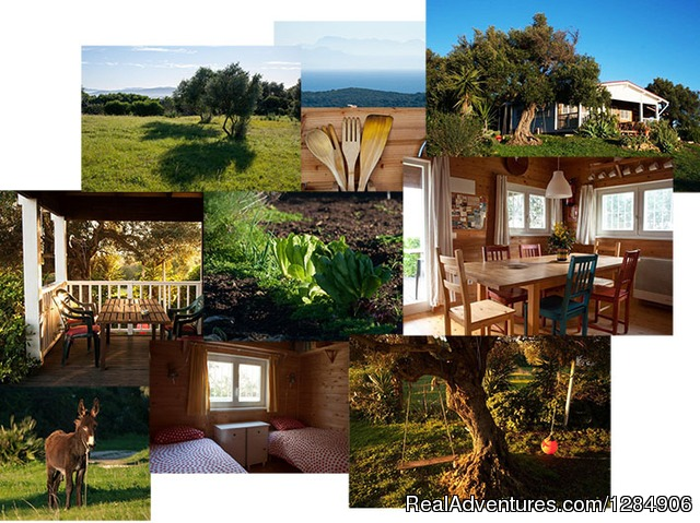 Nature connection retreats in Andalucia