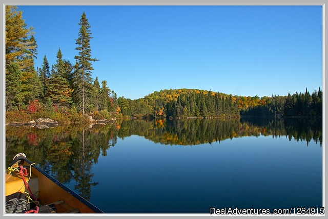 Fall Canoe Trip - Guided Canoe & Kayak Tours into Algonquin Park