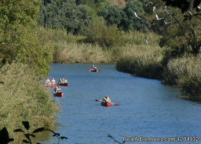 Canoeing And Camping  - A Family Nature Experience