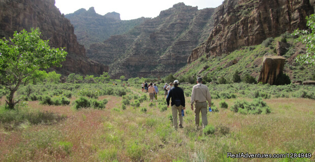 Colorado River & Trial Expeditions