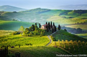 Tuscany small group tour wine tasting and cooking Lucignano, Italy Sight-Seeing Tours