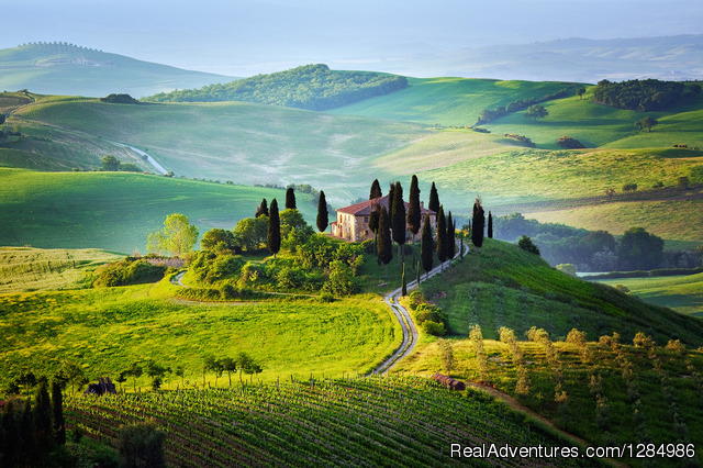 Tuscany small group tour wine tasting and cooking