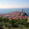 Discover gourmet country Slovenia