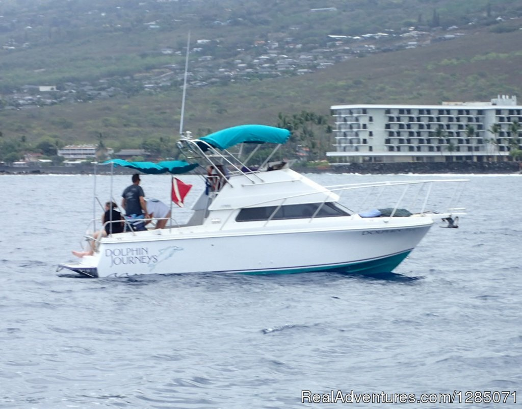 Dolphin Journeys - Kona Coast  Big Island Hawaii Kailua Kona, Hawaii  Eco Tours