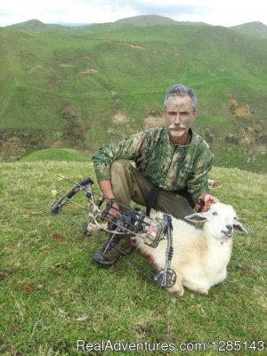 2 Days Bow Hunting Goats New Zealand Raglan, New Zealand Hunting Trips