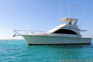 Private Fishing Charter & Sightseeing Yacht Trip Bavaro, Dominican Republic Fishing Trips