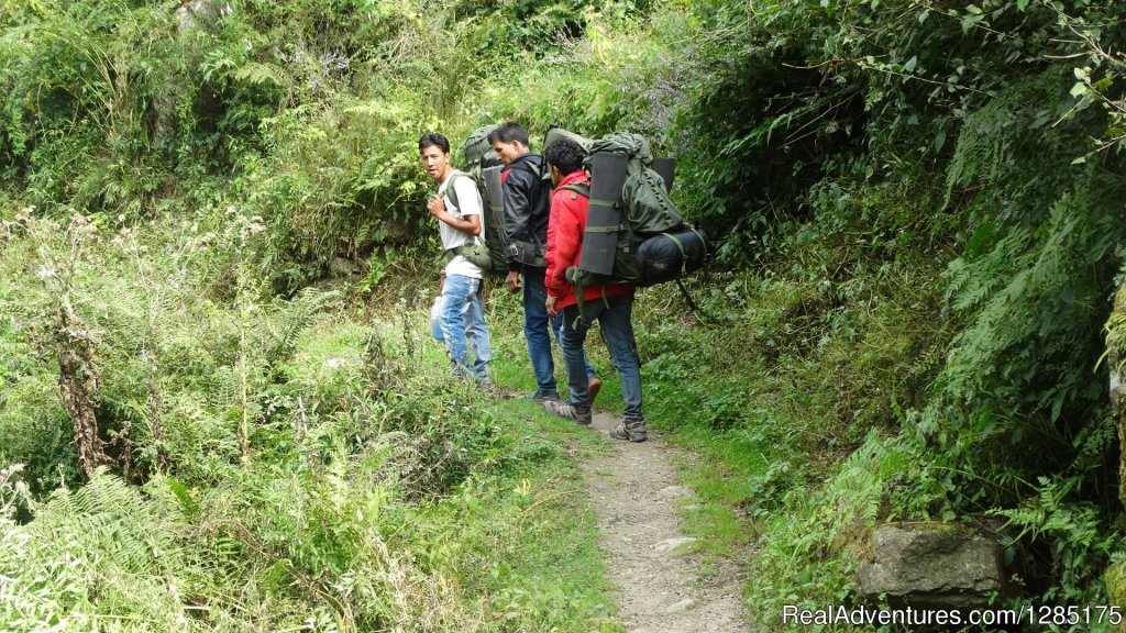 Professional Trekker towards Great Himalayan national Park