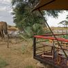 Exclusive & Romantic Safari Gate aways