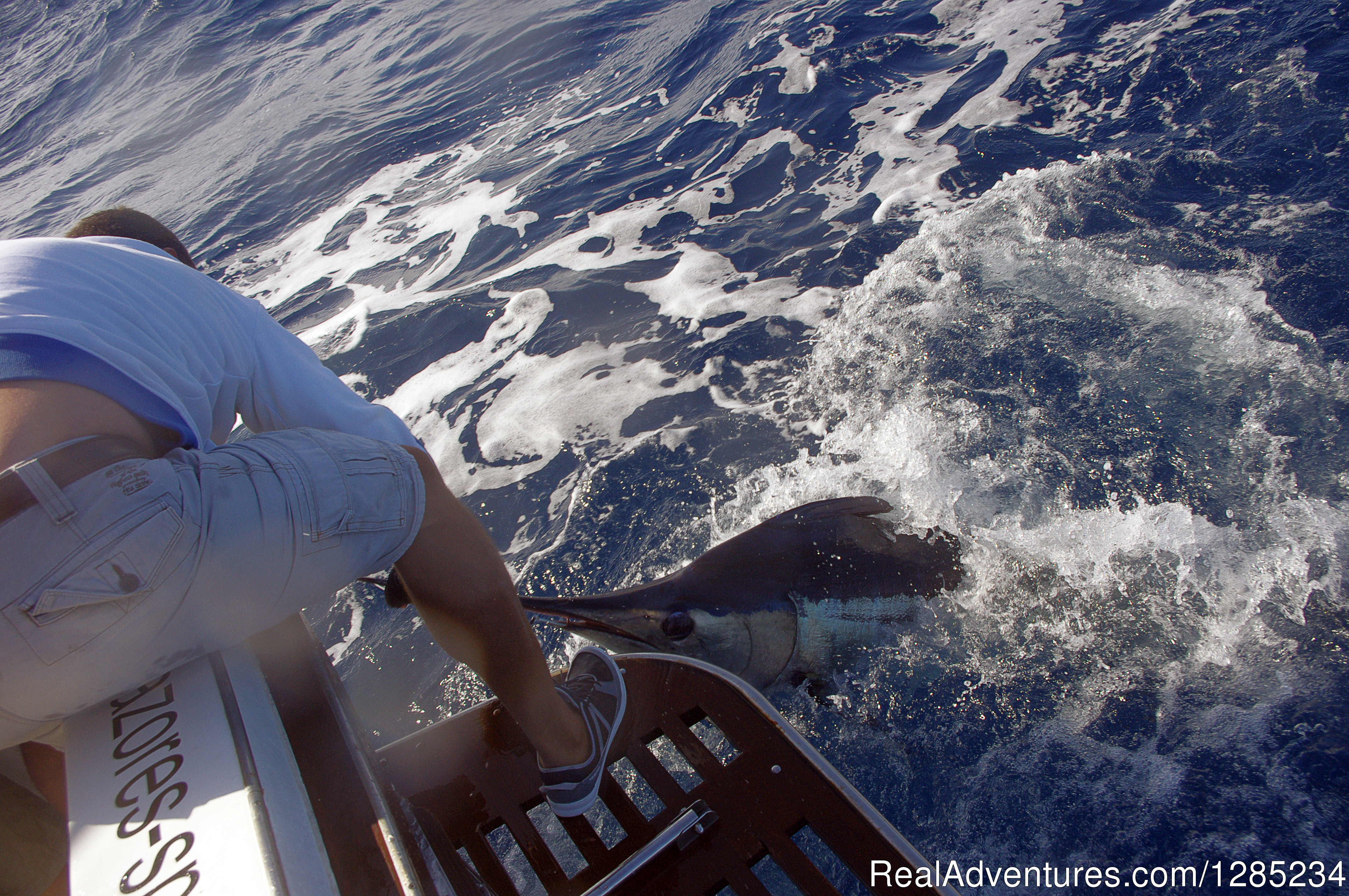 Good Fishing Is Marlin | Image #12/12 | Oceantur Sportfishing Azores