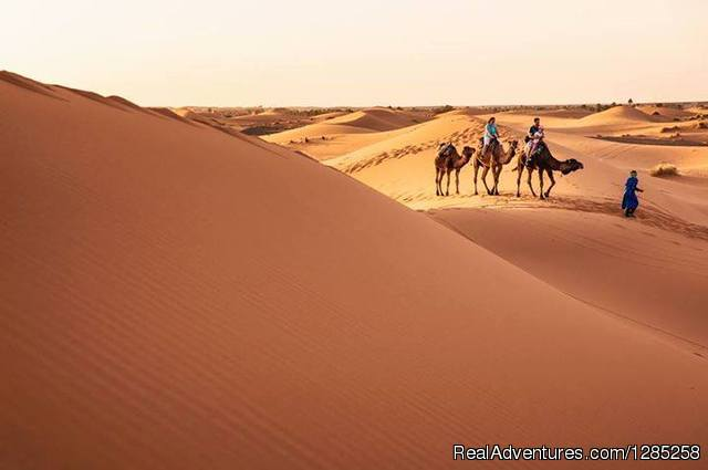 Desert Tours Morcoco - Day Tours / Excursions / ca