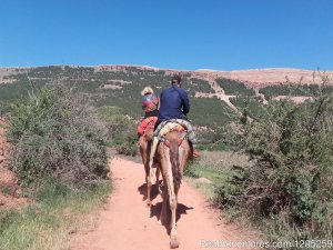 Atlas Mountains, Private Day Trip & Camel Ride Marakech, Morocco Camel Riding