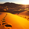 The Best Tours Of Morocco