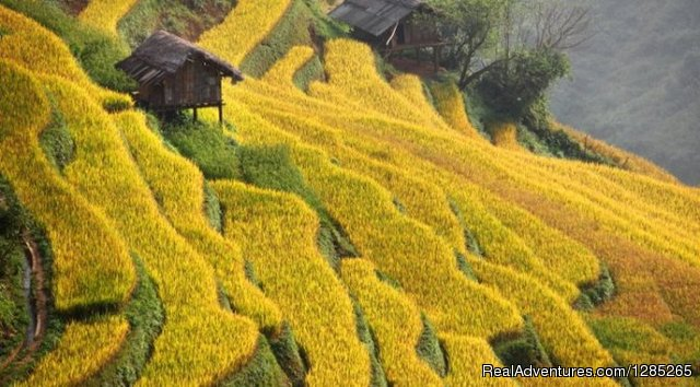 Sapa Package Tour
