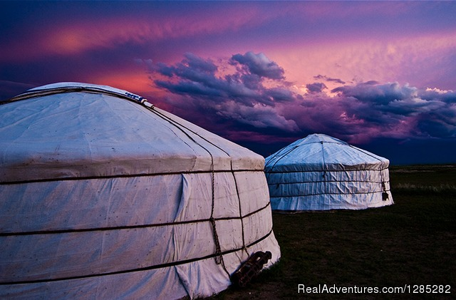 'Man's joy is in wide open and empty spaces.' - Proverb - Local trips of discovery through the real Mongolia