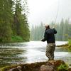 Ketchikan Fishing Lodges