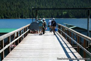 Ketchikan Alaska Fishing Adak, Alaska Hotels & Resorts
