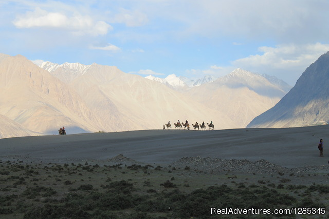 Himalaya Insight Ladakh