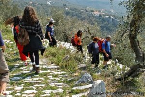 Meteora and Mount Pelion Hiking Tour Pelion, Greece Hiking & Trekking