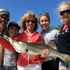 Tampa Fishing Charters, Inc.