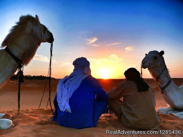 Magic Lamp Tours Marrakesh, Morocco Camel Riding
