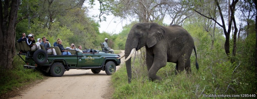 Image #3/6 | Best African Safaris